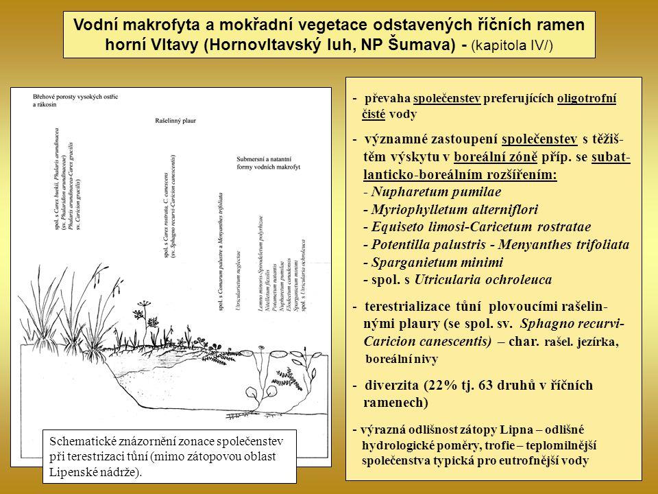 Vodní makrofyta a mokřadní vegetace odstavených říčních ramen horní Vltavy (Hornovltavský luh, NP Šumava) - (kapitola IV/) - převaha společenstev pref