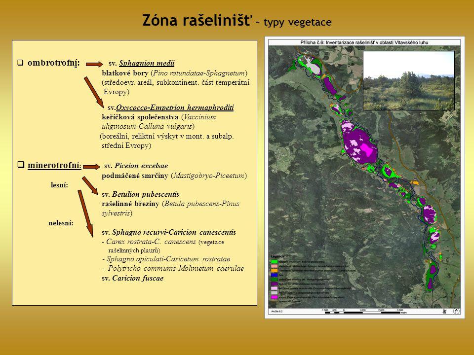  ombrotrofní: sv. Sphagnion medii blatkové bory (Pino rotundatae-Sphagnetum) (středoevr. areál, subkontinent. část temperátní Evropy) sv.Oxycocco-Emp
