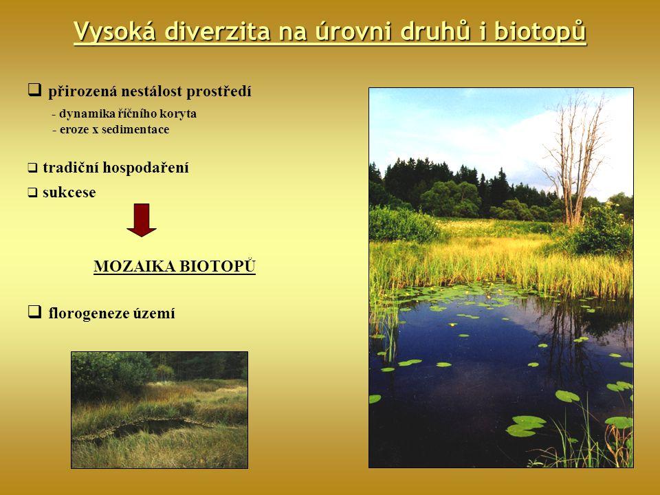 Vysoká diverzita na úrovni druhů i biotopů  přirozená nestálost prostředí - dynamika říčního koryta - eroze x sedimentace  tradiční hospodaření  su