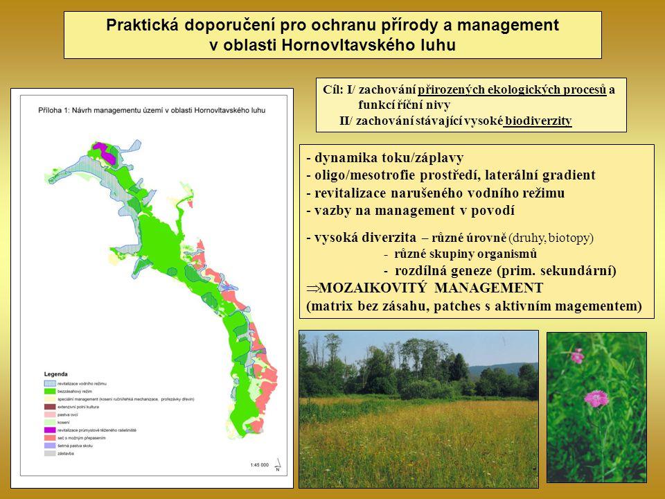 Praktická doporučení pro ochranu přírody a management v oblasti Hornovltavského luhu Cíl: I/ zachování přirozených ekologických procesů a funkcí říční
