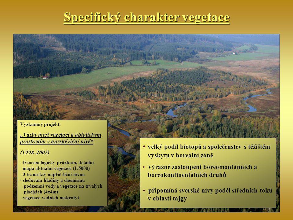"""Specifický charakter vegetace Výzkumný projekt: """"Vazby mezi vegetací a abiotickým prostředím v horské říční nivě"""" (1998-2005) - fytocenologický průzku"""