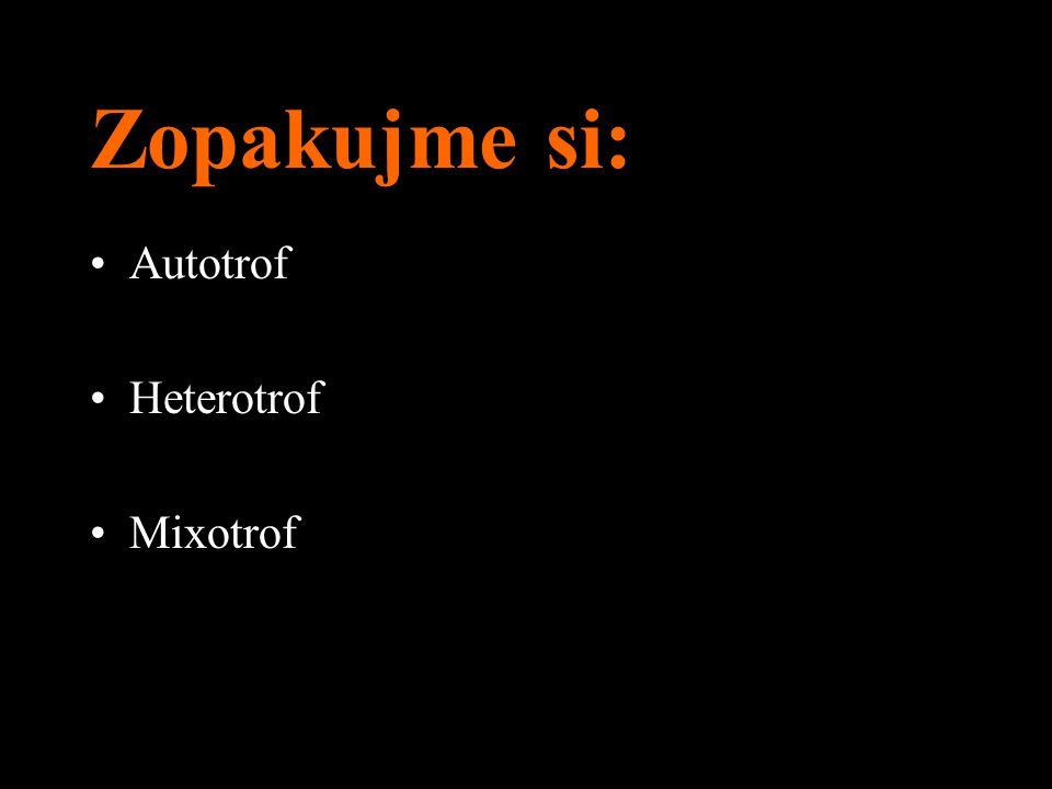 Zopakujme si: Autotrof Heterotrof Mixotrof