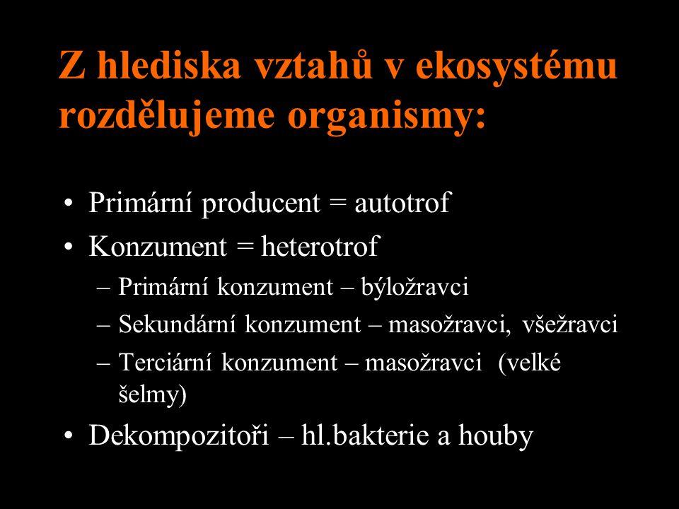 Z hlediska vztahů v ekosystému rozdělujeme organismy: Primární producent = autotrof Konzument = heterotrof –Primární konzument – býložravci –Sekundárn
