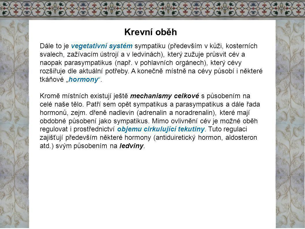 Krevní oběh Dále to je vegetativní systém sympatiku (především v kůži, kosterních svalech, zažívacím ústrojí a v ledvinách), který zužuje průsvit cév