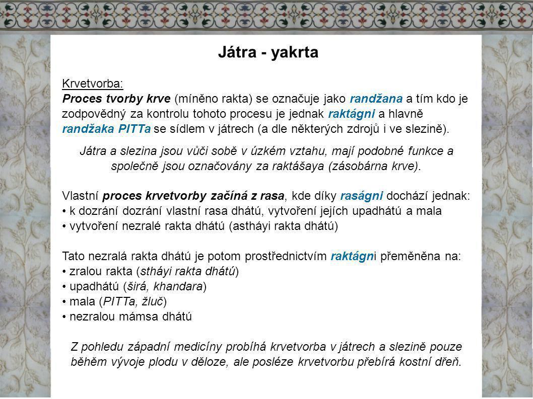 Játra - yakrta Krvetvorba: Proces tvorby krve (míněno rakta) se označuje jako randžana a tím kdo je zodpovědný za kontrolu tohoto procesu je jednak ra