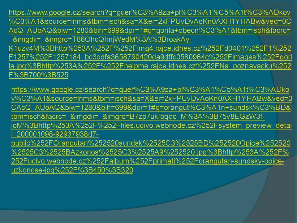 https://www.google.cz/search?hl=cs&site=imghp&tbm=isch&source=hp&biw= 1280&bih=656&q=d%C5%BEungle&oq=d%C5%BEungle&gs_l=img.3..0l2j0i2 4l8.1252.32135.0.33406.24.14.8.2.3.0.196.1622.6j8.14.0....0...1ac.1.27.img..