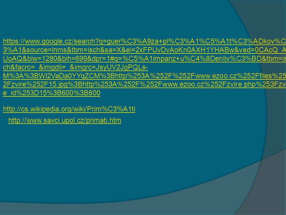 https://www.google.cz/search?q=guer%C3%A9za+pl%C3%A1%C5%A1t%C3%ADkov %C3%A1&source=lnms&tbm=isch&sa=X&ei=2xFPUvDvAoKn0AXH1YHABw&ved=0C AcQ_AUoAQ&biw=1280&bih=699&dpr=1#q=gorila+obecn%C3%A1&tbm=isch&facrc= _&imgdii=_&imgrc=T86OhcQImjWedM%3A%3BroakAy- K1uzy4M%3Bhttp%253A%252F%252Fimg4.rajce.idnes.cz%252Fd0401%252F1%252 F1257%252F1257184_bc3cdfa3658790420da9dffc0580964c%252Fimages%252Fgori la.jpg%3Bhttp%253A%252F%252Fhelpme.rajce.idnes.cz%252FNa_poznavacku%252 F%3B700%3B525 https://www.google.cz/search?q=guer%C3%A9za+pl%C3%A1%C5%A1t%C3%ADko v%C3%A1&source=lnms&tbm=isch&sa=X&ei=2xFPUvDvAoKn0AXH1YHABw&ved=0 CAcQ_AUoAQ&biw=1280&bih=699&dpr=1#q=orangut%C3%A1n+sundsk%C3%BD& tbm=isch&facrc=_&imgdii=_&imgrc=B7zp7ukIbqdo_M%3A%3B75v8EGzW3f- joM%3Bhttp%253A%252F%252Ffiles.ucivo.webnode.cz%252Fsystem_preview_detai l_200001098-92937938d7- public%252FOrangutan%252520sundsk%2525C3%2525BD%252520Opice%252520 %2525C3%2525BAzkonos%2525C3%2525A9%252520.jpg%3Bhttp%253A%252F% 252Fucivo.webnode.cz%252Falbum%252Fprimati%252Forangutan-sundsky-opice- uzkonose-jpg%252F%3B450%3B320 https://www.google.cz/search?q=guer%C3%A9za+pl%C3%A1%C5%A1t%C3%ADkov%C3%A1&source=lnms&tbm=isch&sa=X&ei=2xFPUvDvAoKn0AXH1YHABw&ved=0CAcQ_AUoAQ&biw=1280&bih=699&dpr=1#q=%C5%A1impanz+u%C4%8Denliv%C3%BD&tbm=isch&facrc=_&imgdii=_&imgrc=JsyUV2JgPQLs-M%3A%3BWl2VaDa0YYqZCM%3Bhttp%253A%252F%252Fwww.ezoo.cz%252Ffiles%252Fzvire%252F15.jpg%3Bhttp%253A%252F%252Fwww.ezoo.cz%252Fzvire.php%253Fzvire_id%253D15%3B600%3B800https://www.google.cz/search?q=guer%C3%A9za+pl%C3%A1%C5%A1t%C3%ADkov%C3%A1&source=lnms&tbm=isch&sa=X&ei=2xFPUvDvAoKn0AXH1YHABw&ved=0CAcQ_AUoAQ&biw=1280&bih=699&dpr=1#q=%C5%A1impanz+u%C4%8Denliv%C3%BD&tbm=isch&facrc=_&imgdii=_&imgrc=JsyUV2JgPQLs-M%3A%3BWl2VaDa0YYqZCM%3Bhttp%253A%252F%252Fwww.ezoo.cz%252Ffiles%252Fzvire%252F15.jpg%3Bhttp%253A%252F%252Fwww.ezoo.cz%252Fzvire.php%253Fzvire_id%253D15%3B600%3B800