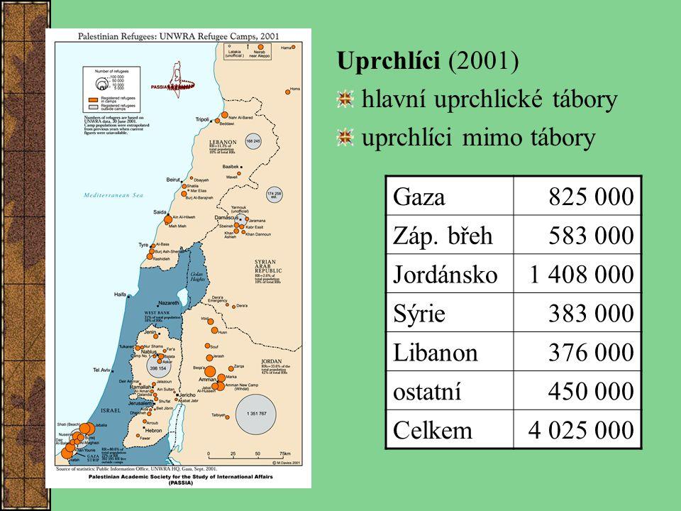 Uprchlíci (2001) hlavní uprchlické tábory uprchlíci mimo tábory Gaza825 000 Záp. břeh583 000 Jordánsko1 408 000 Sýrie383 000 Libanon376 000 ostatní450