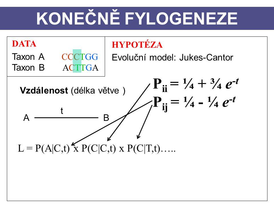 DATA Taxon A CCCTGG Taxon B ACTTGA HYPOTÉZA Evoluční model: Jukes-Cantor Vzdálenost (délka větve ) A B t KONEČNĚ FYLOGENEZE L = P(A|C,t) x P(C|C,t) x