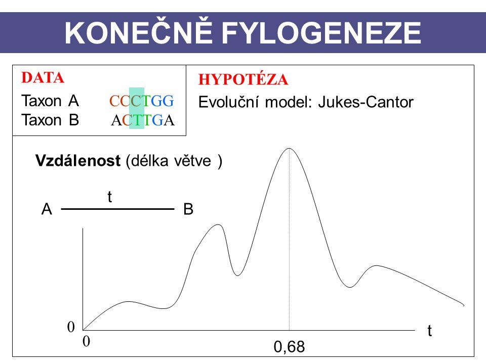 DATA Taxon A CCCTGG Taxon B ACTTGA HYPOTÉZA Evoluční model: Jukes-Cantor Vzdálenost (délka větve ) A B t KONEČNĚ FYLOGENEZE t 0 0 0,68