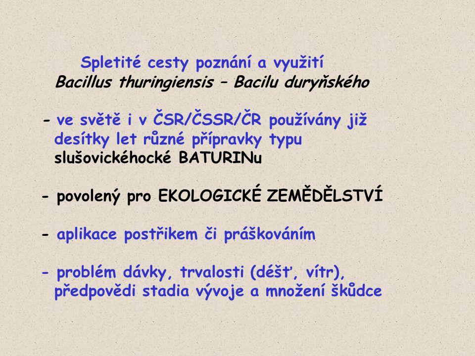 Spletité cesty poznání a využití Bacillus thuringiensis – Bacilu duryňského - ve světě i v ČSR/ČSSR/ČR používány již desítky let různé přípravky typu slušovickéhocké BATURINu - povolený pro EKOLOGICKÉ ZEMĚDĚLSTVÍ - aplikace postřikem či práškováním - problém dávky, trvalosti (déšť, vítr), předpovědi stadia vývoje a množení škůdce