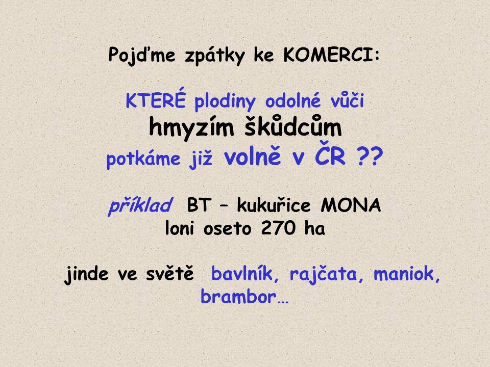 Pojďme zpátky ke KOMERCI: KTERÉ plodiny odolné vůči hmyzím škůdcům potkáme již volně v ČR .