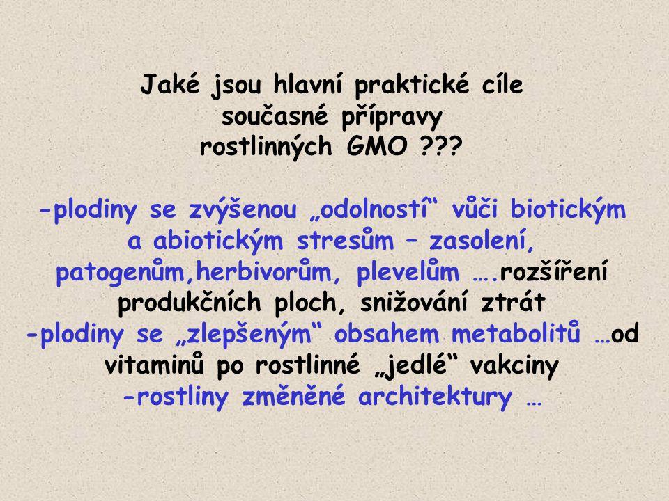 """Jaké jsou hlavní praktické cíle současné přípravy rostlinných GMO ??? -plodiny se zvýšenou """"odolností"""" vůči biotickým a abiotickým stresům – zasolení,"""