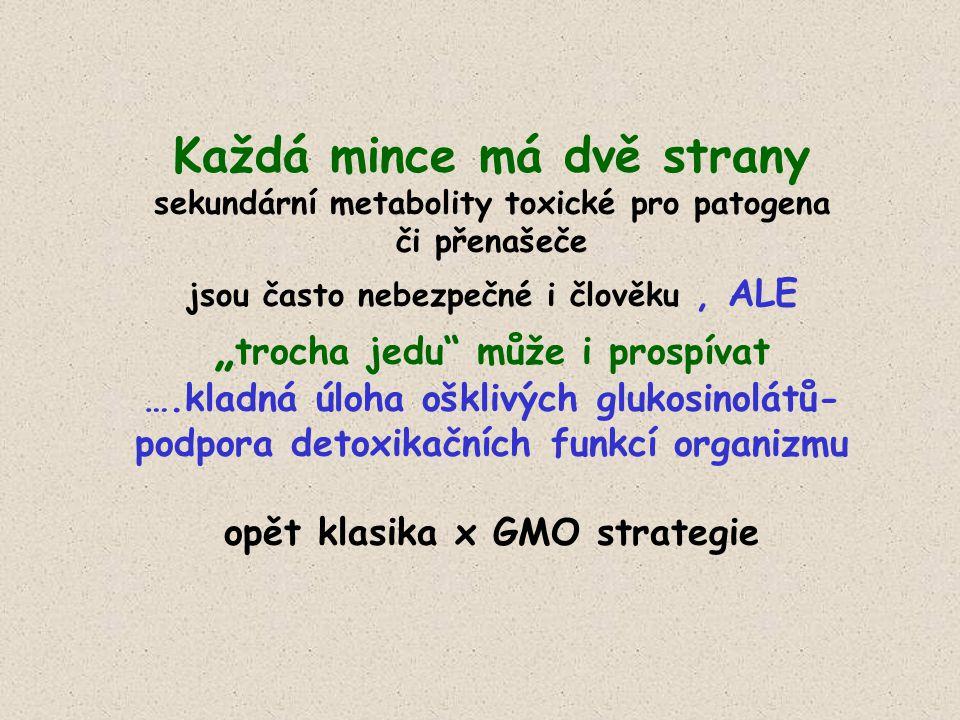 """Každá mince má dvě strany sekundární metabolity toxické pro patogena či přenašeče jsou často nebezpečné i člověku, ALE """" trocha jedu může i prospívat ….kladná úloha ošklivých glukosinolátů- podpora detoxikačních funkcí organizmu opět klasika x GMO strategie"""