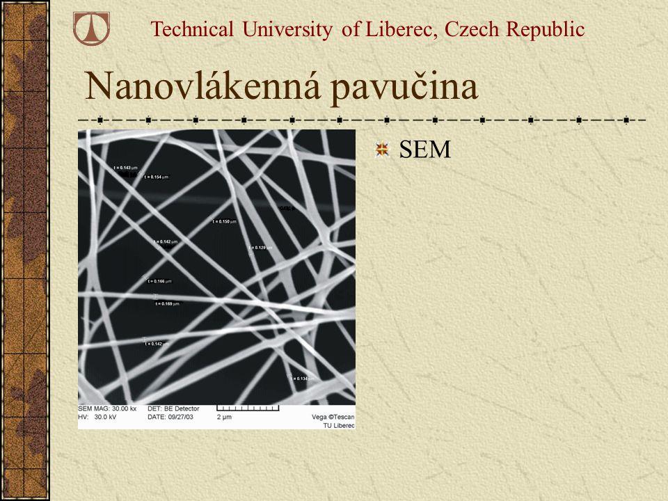 Nanovlákenná pavučina SEM Technical University of Liberec, Czech Republic