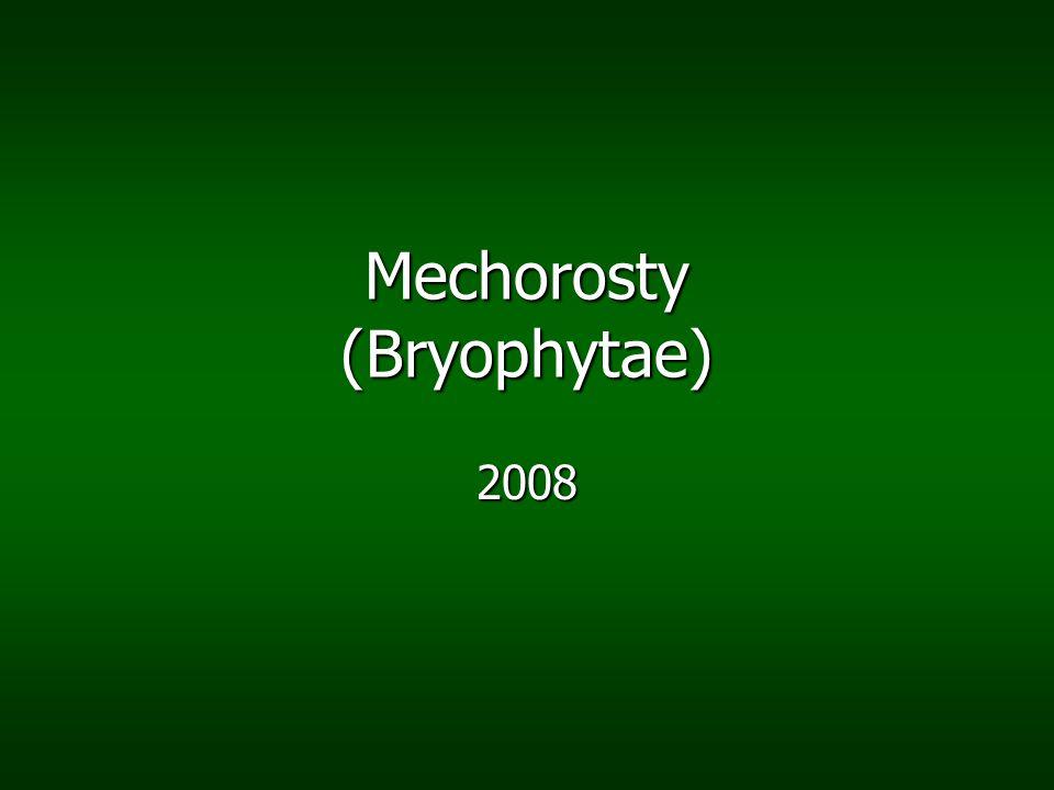 Rodozměna mechorosty jsou zajímavé tím, že sporofyt zcela závisí na gametofytu mechorosty jsou zajímavé tím, že sporofyt zcela závisí na gametofytu gametofyt je větší a žije déle než sporofyt gametofyt je větší a žije déle než sporofyt