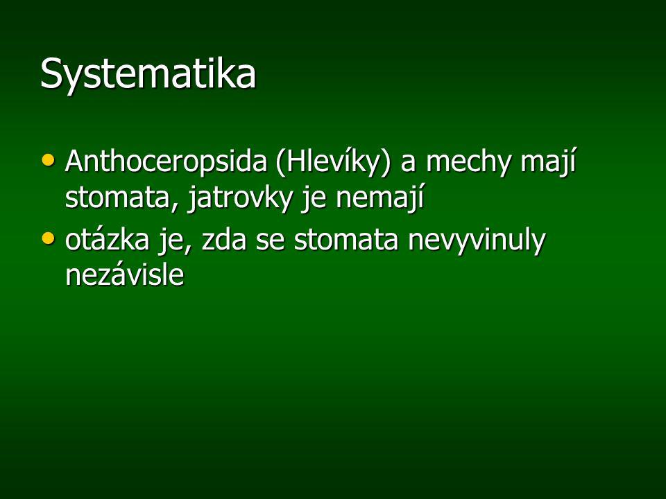 Systematika Anthoceropsida (Hlevíky) a mechy mají stomata, jatrovky je nemají Anthoceropsida (Hlevíky) a mechy mají stomata, jatrovky je nemají otázka