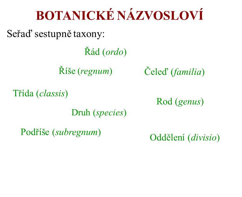 BOTANICKÉ NÁZVOSLOVÍ Seřaď sestupně taxony: Říše (regnum) Podříše (subregnum) Oddělení (divisio) Třída (classis) Řád (ordo) Čeleď (familia) Rod (genus