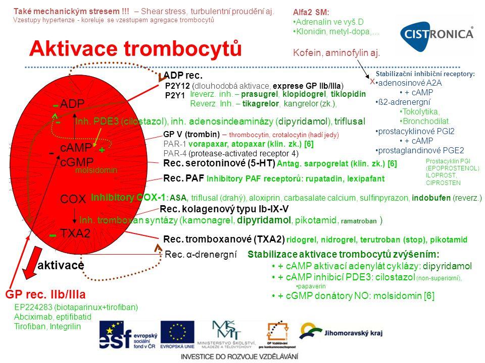Aktivace trombocytů ADP cAMP cGMP COX TXA2 ADP rec. P2Y12 (dlouhodobá aktivace, exprese GP IIb/IIIa) P2Y1 Inh. PDE3 (cilostazol), inh. adenosindeaminá