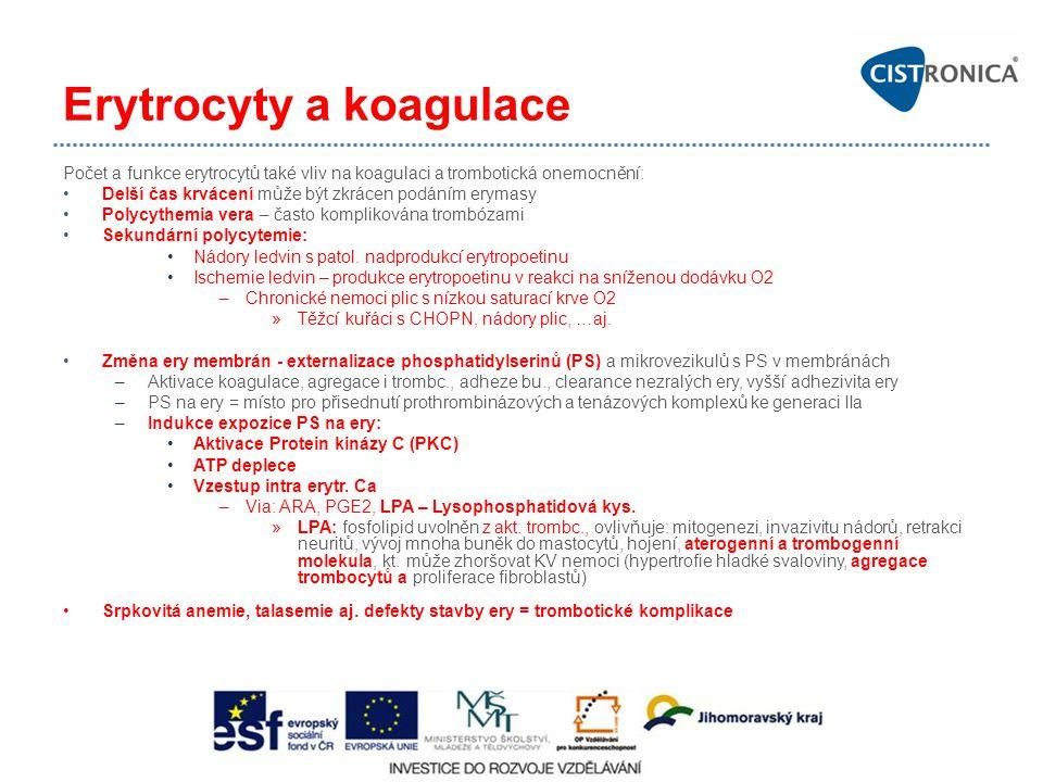 Erytrocyty a koagulace Počet a funkce erytrocytů také vliv na koagulaci a trombotická onemocnění: Delší čas krvácení může být zkrácen podáním erymasy