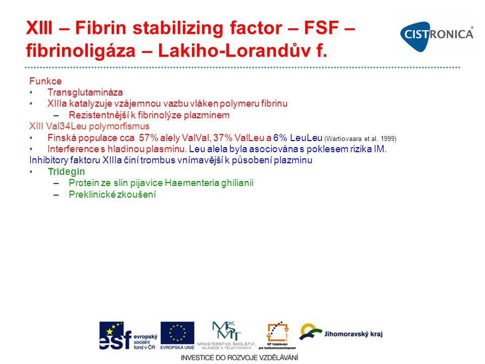XIII – Fibrin stabilizing factor – FSF – fibrinoligáza – Lakiho-Lorandův f. Funkce Transglutamináza XIIIa katalyzuje vzájemnou vazbu vláken polymeru f