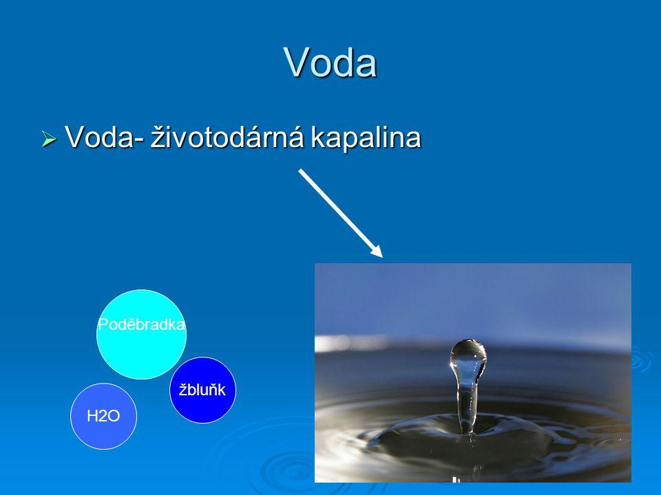 Voda VVVVoda- životodárná kapalina žbluňk Poděbradka H2O
