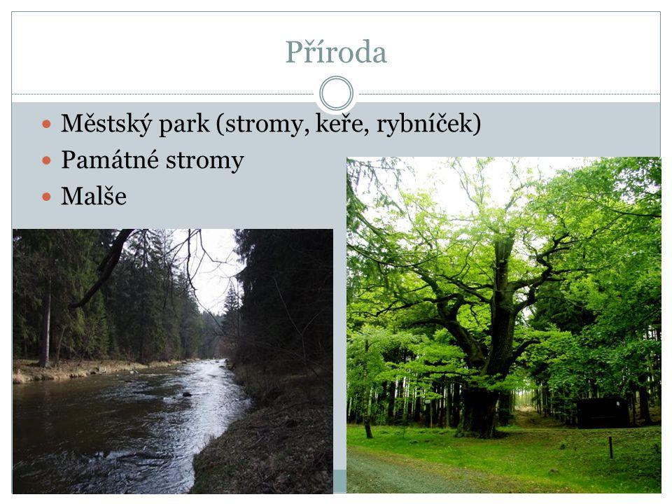 Příroda Městský park (stromy, keře, rybníček) Památné stromy Malše