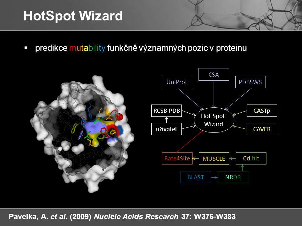 Hot Spot Wizard RCSB PDB uživatel tunnels Cd-hit BLASTNRDB MUSCLE Rate4Site  predikce mutability funkčně významných pozic v proteinu HotSpot Wizard C