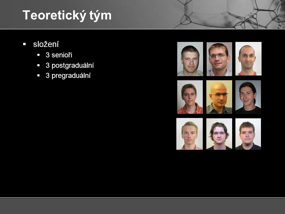 Teoretický tým  složení  3 senioři  3 postgraduální  3 pregraduální  interdisciplinární  molekulární biologie  chemie  biochemie  informatika