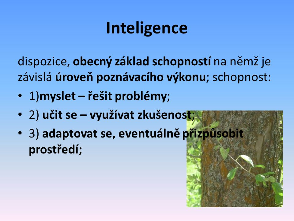 Inteligence dispozice, obecný základ schopností na němž je závislá úroveň poznávacího výkonu; schopnost: 1)myslet – řešit problémy; 2) učit se – využívat zkušenost; 3) adaptovat se, eventuálně přizpůsobit prostředí;