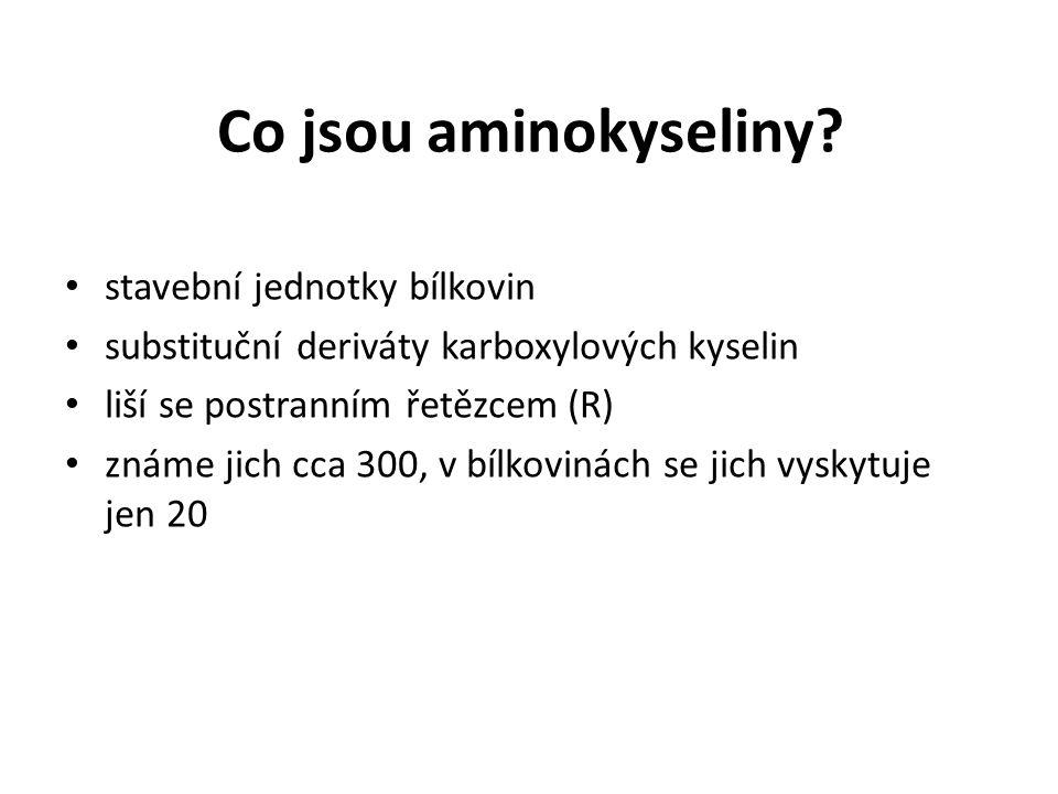 Co jsou aminokyseliny.