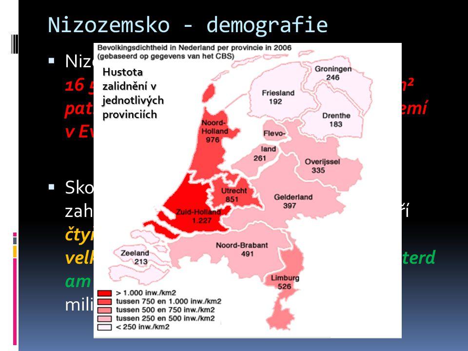 Nizozemsko - demografie  Nizozemsko mělo na konci roku 2009 16 515 057 obyvatel a s hustotou 397,7/km² patří mezi jedny z nejhustěji osídlených zemí v Evropě  Skoro polovinu těchto obyvatel zahrnuje konurbace Randstad, kterou tvoří čtyři velké aglomerace Amsterdam, Haag, Rotterd am a Utrecht (celkově zde žije přibližně 8 milionů obyvatel) Hustota zalidnění v jednotlivých provinciích