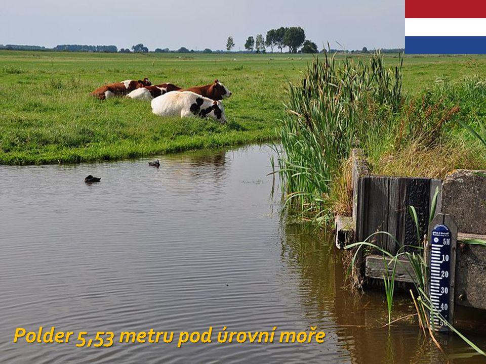 Satelitní snímek polderu Noordoostpolder