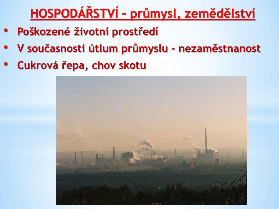HOSPODÁŘSTVÍ – průmysl, zemědělství Poškozené životní prostředí Poškozené životní prostředí V současnosti útlum průmyslu - nezaměstnanost V současnosti útlum průmyslu - nezaměstnanost Cukrová řepa, chov skotu Cukrová řepa, chov skotu