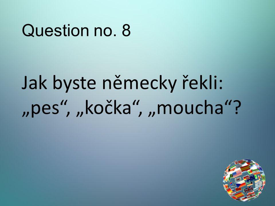 """Question no. 8 Jak byste německy řekli: """"pes , """"kočka , """"moucha"""