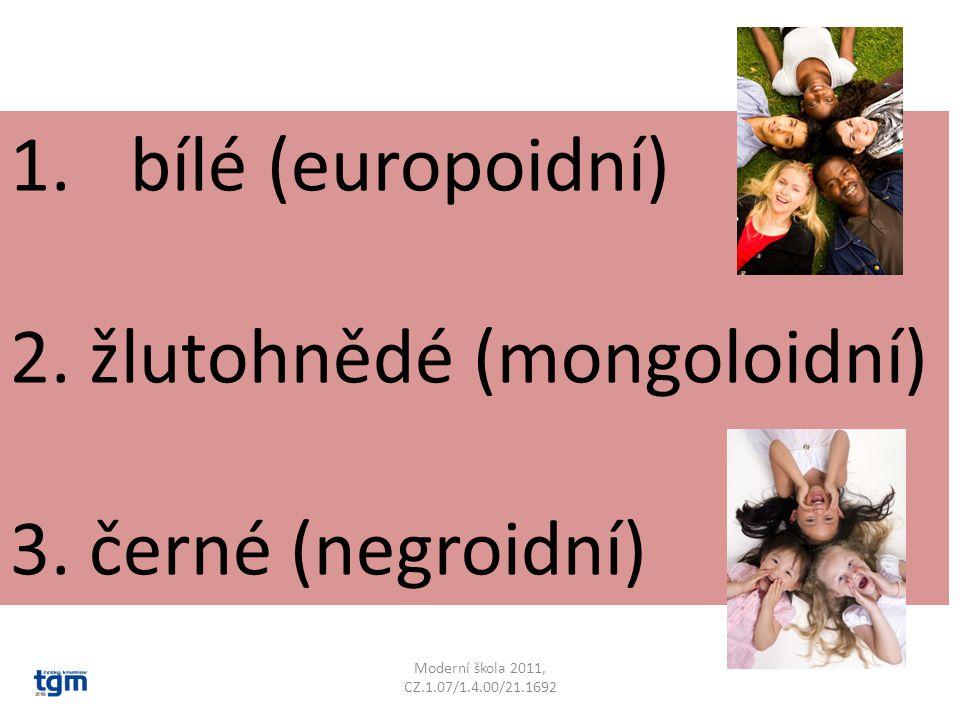 1.bílé (europoidní) 2. žlutohnědé (mongoloidní) 3. černé (negroidní)