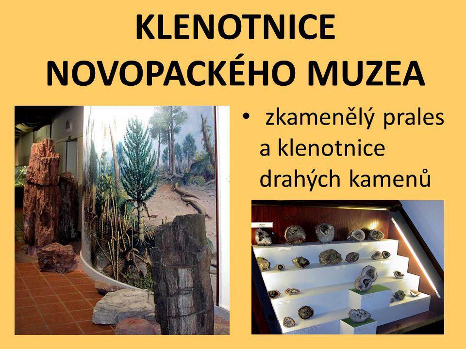 KLENOTNICE NOVOPACKÉHO MUZEA zkamenělý prales a klenotnice drahých kamenů