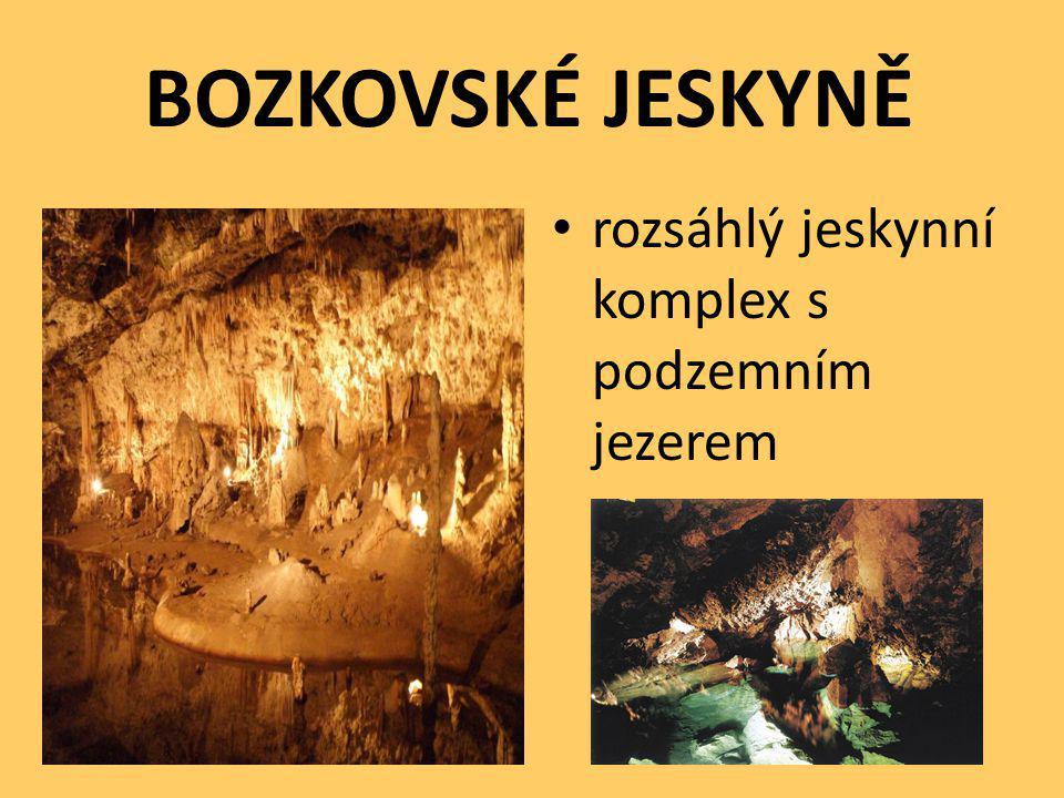 BOZKOVSKÉ JESKYNĚ rozsáhlý jeskynní komplex s podzemním jezerem