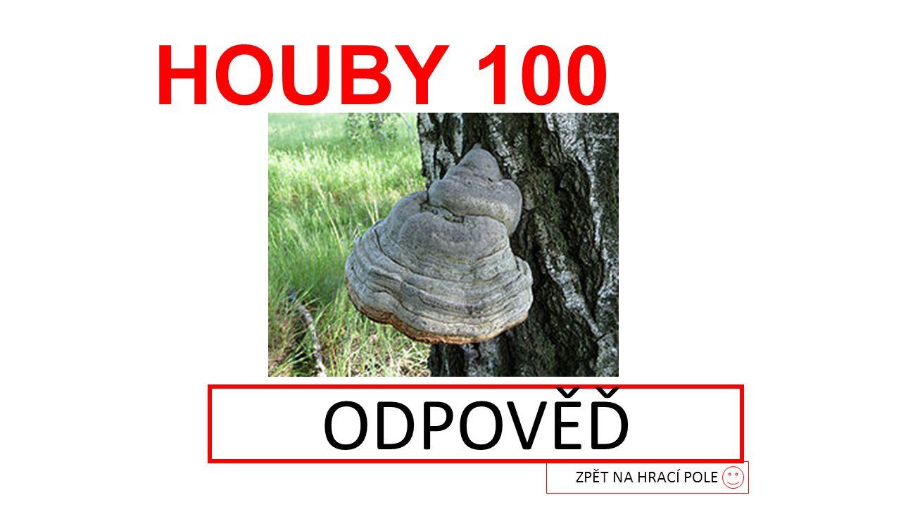 HOUBY 100 troudnatec ZPĚT NA HRACÍ POLE ODPOVĚĎ