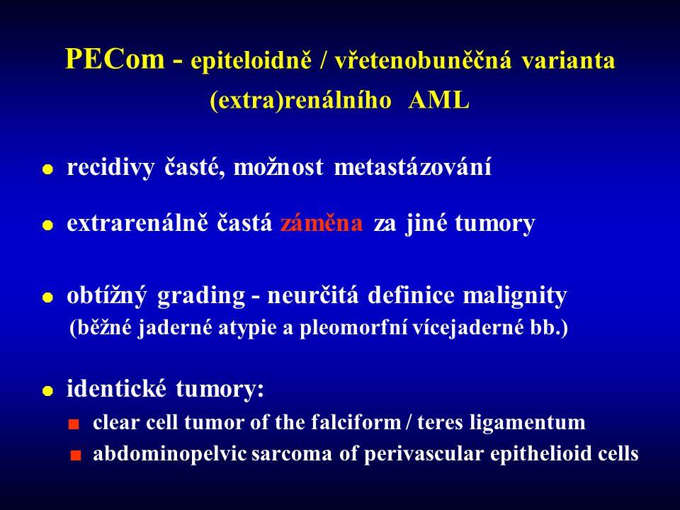 PECom - epiteloidně / vřetenobuněčná varianta (extra)renálního AML  recidivy časté, možnost metastázování  extrarenálně častá záměna za jiné tumory  obtížný grading - neurčitá definice malignity (běžné jaderné atypie a pleomorfní vícejaderné bb.)  identické tumory: clear cell tumor of the falciform / teres ligamentum abdominopelvic sarcoma of perivascular epithelioid cells