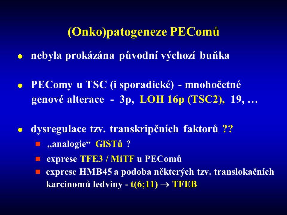  nebyla prokázána původní výchozí buňka  PEComy u TSC (i sporadické) - mnohočetné genové alterace - 3p, LOH 16p (TSC2), 19, …  dysregulace tzv.