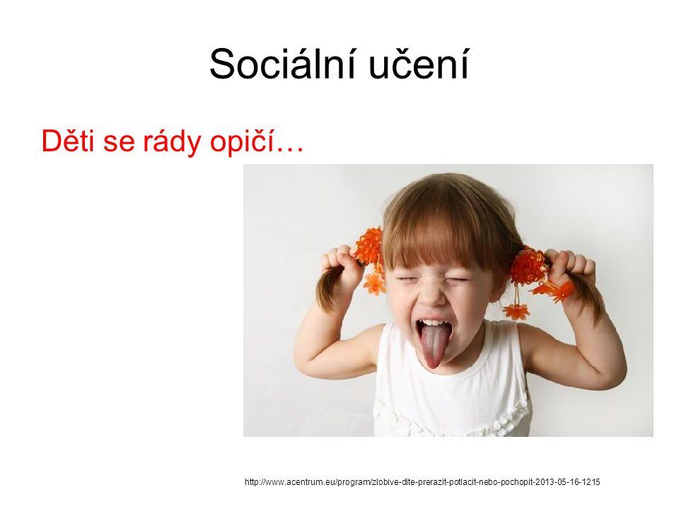Sociální učení Děti se rády opičí… http://www.acentrum.eu/program/zlobive-dite-prerazit-potlacit-nebo-pochopit-2013-05-16-1215