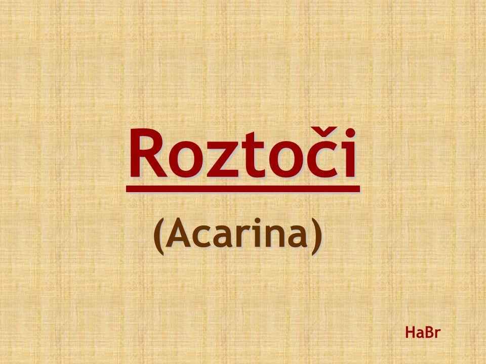 Roztoči (Acarina) HaBr
