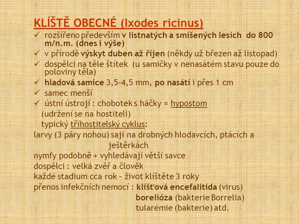 KLÍŠTĚ OBECNÉ (Ixodes ricinus) rozšířeno především v listnatých a smíšených lesích do 800 m/n.m. (dnes i výše) v přírodě výskyt duben až říjen (někdy