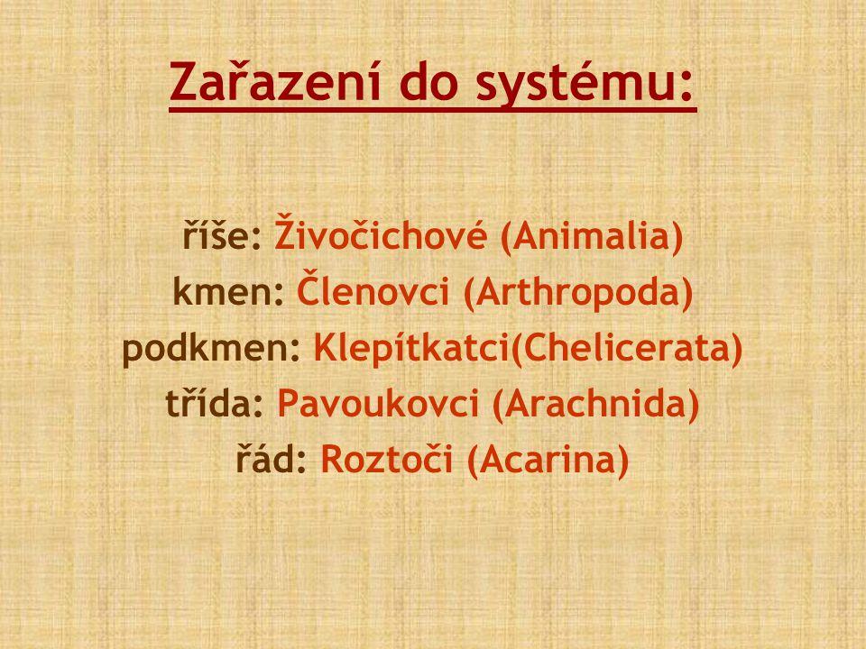 Zařazení do systému: říše: Živočichové (Animalia) kmen: Členovci (Arthropoda) podkmen: Klepítkatci(Chelicerata) třída: Pavoukovci (Arachnida) řád: Roz