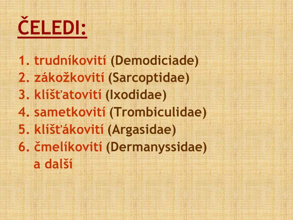 ČELEDI: 1. trudníkovití (Demodiciade) 2. zákožkovití (Sarcoptidae) 3. klíšťatovití (Ixodidae) 4. sametkovití (Trombiculidae) 5. klíšťákovití (Argasida