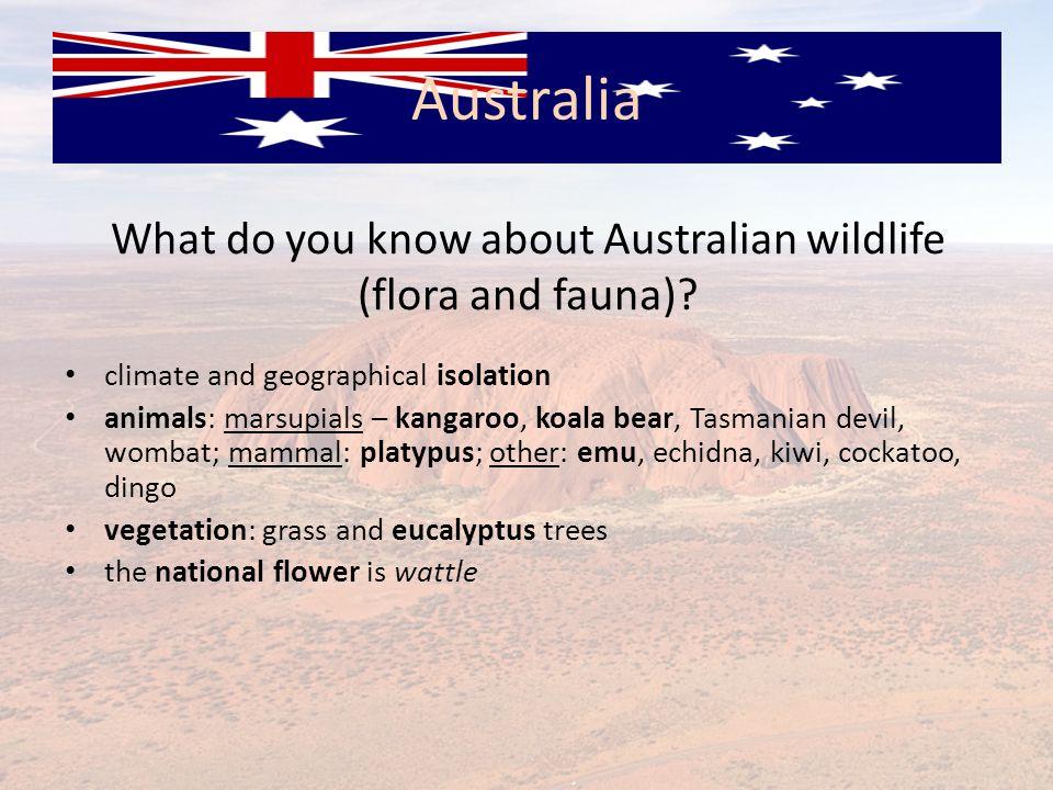 What do you know about Australian wildlife (flora and fauna)? climate and geographical isolation animals: marsupials – kangaroo, koala bear, Tasmanian