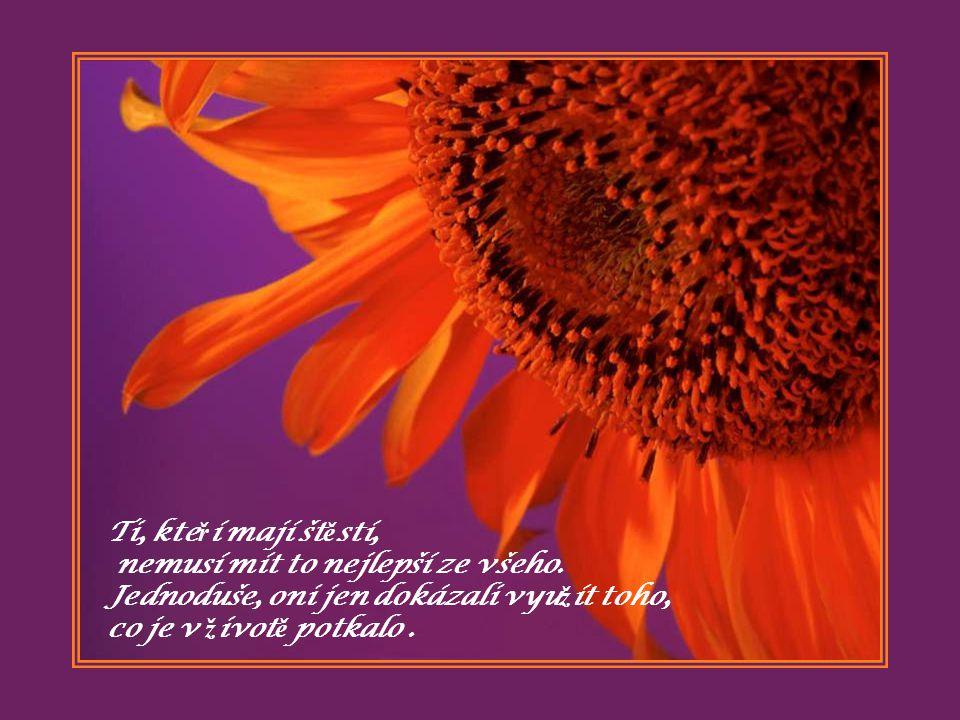 Kdy ž chceš, d ě lej to, co já, pošli tento odkaz t ě m, kte ř í pro Tebe n ě co znamenají …