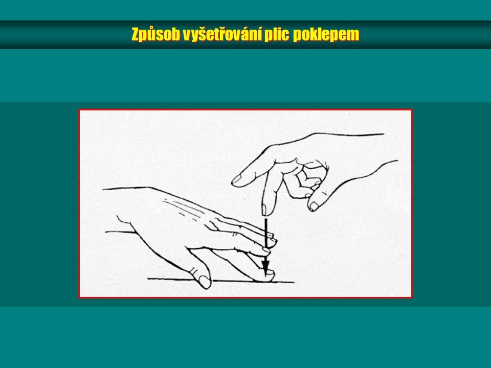 Způsob vyšetřování plic poklepem