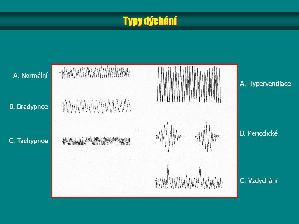 A. Normální B. Bradypnoe C. Tachypnoe A. Hyperventilace B. Periodické C. Vzdychání Typy dýchání